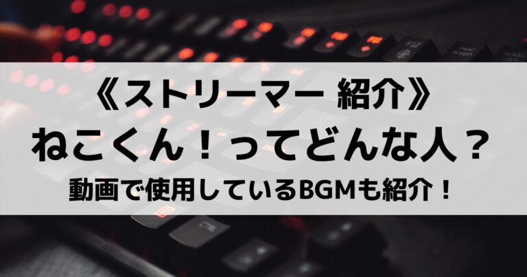 Bgm ねこくん