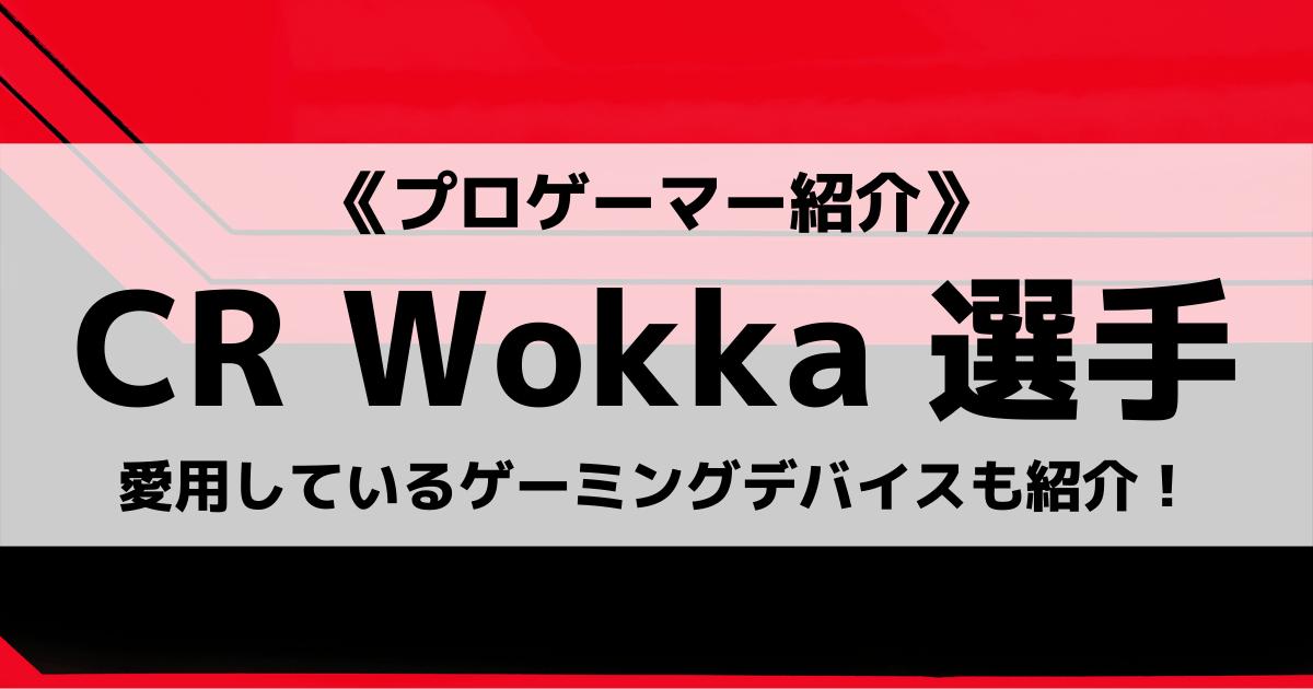 「Crazy Raccoon」の「Wokka」選手について紹介!