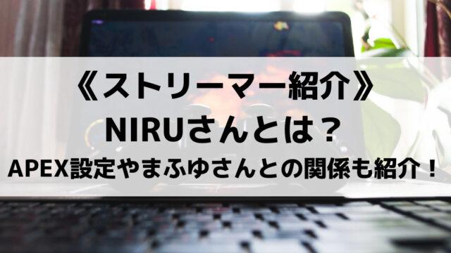 APEX実況者のNIRUさんとは?ゲーム設定やまふゆさんとの関係について紹介!