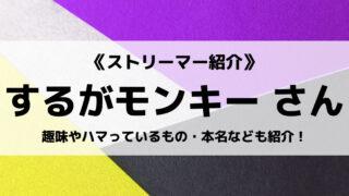 「DeToNator」の「するがモンキー」さんについて紹介!