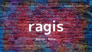 「Nester」の「ragis」さんについて紹介!